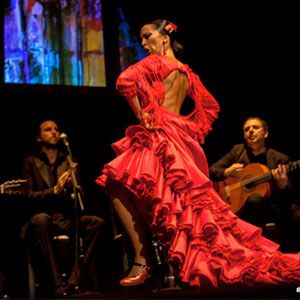 Flamenco Passion